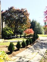 538-delaware-county-landscaping_03