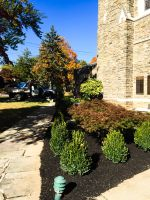 538-delaware-county-landscaping_08